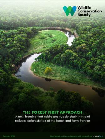 deforestation-partage-de-rapport-sur-les-forets-et-travaux-scientifiques-de-wcs