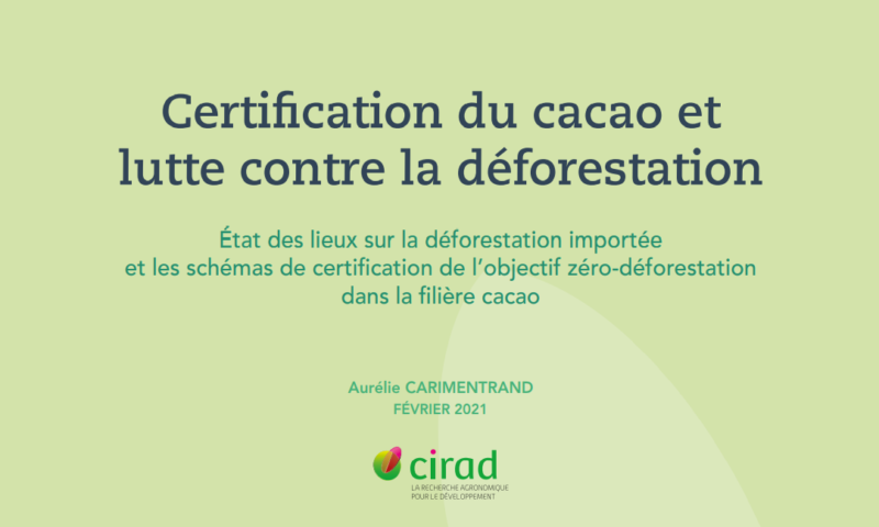 rapport-detude-sur-la-deforestation-importee-et-la-certification-dans-la-filiere-cacao