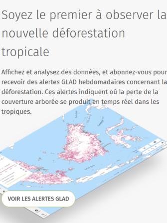 global-forest-watch-gfw-un-outil-pour-la-surveillance-forestiere
