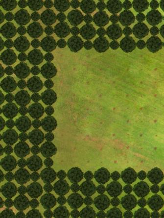 ce-que-vous-devez-savoir-a-propos-des-donnees-2019-de-global-forest-watch-relatives-a-la-perte-de-la-couverture-arboree