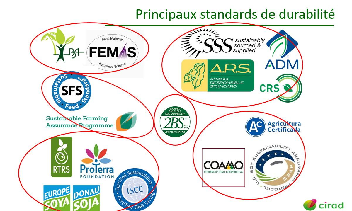 certification-de-lobjectif-zero-deforestation-avancement-du-chantier-octobre-2020