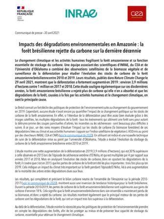 une-etude-sur-les-impacts-des-degradations-environnementales-en-amazonie-2010-2019