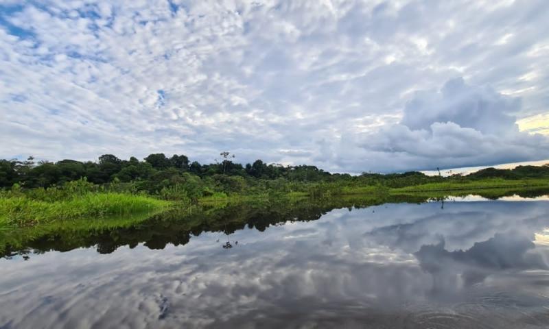 document-de-travail-policy-brief-sur-les-definitions-et-outils-de-suivi-de-la-deforestation-importee