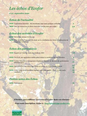 lutter-contre-la-deforestation-importee-mais-pour-quelle-foret-et-avec-quels-standards